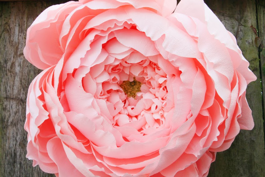giant closed crepe paper peony
