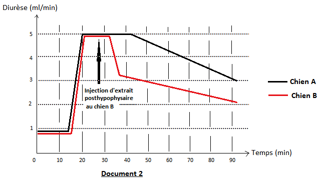 Normal glucose excretion in urine yellow