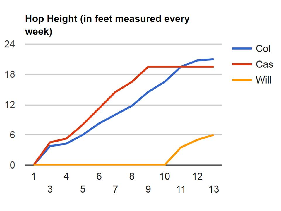 Hop Height 2015