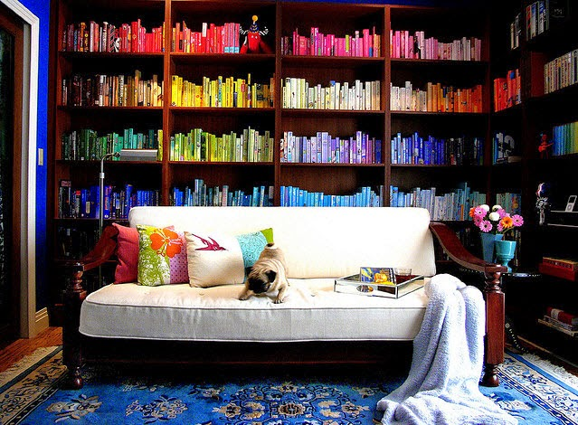 wall of books organized by color