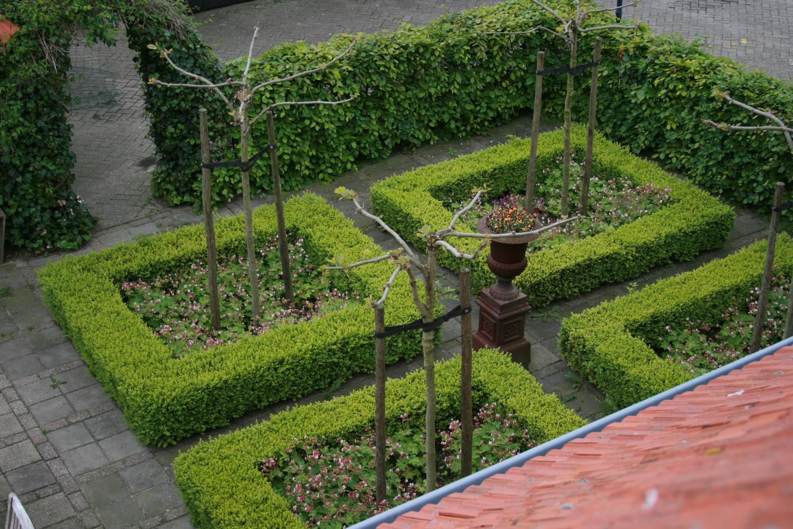 Carpe diem mijn tuin for Tuin beplanten
