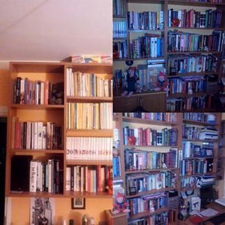 Nie ma czegoś takiego jak za dużo książek :)
