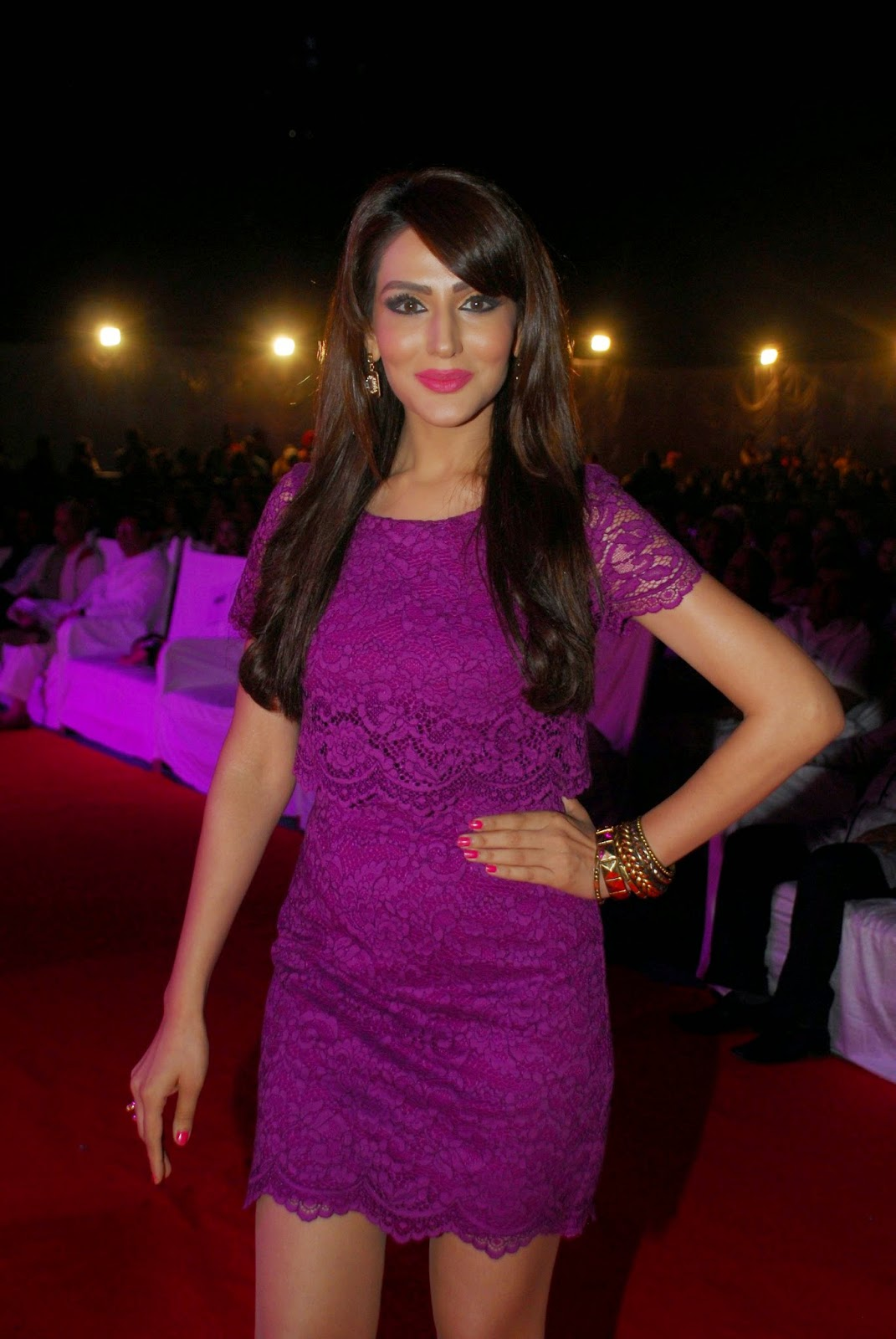 Stars At Mulund Festival 2014 Stills