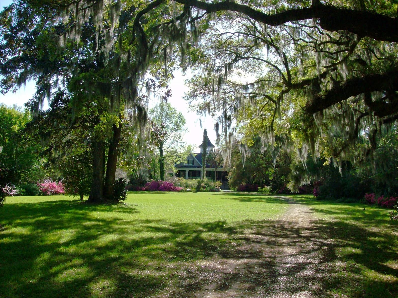 Magnolia Plantation An Inspirational Life
