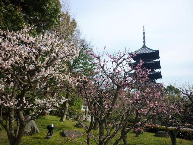 toji, kyoto