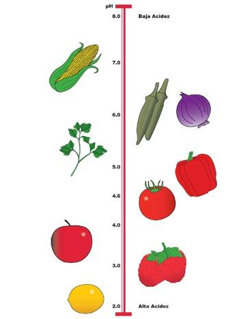 pH y los cultivos