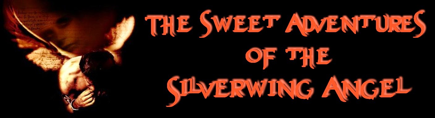 The Sweet Adventures of the Silverwing Angel