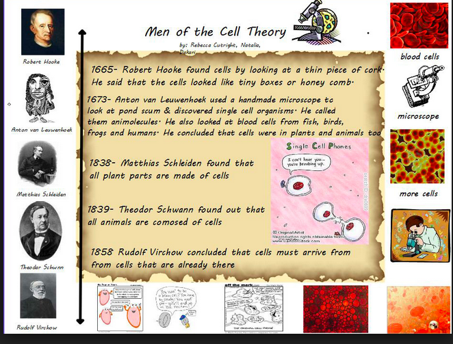 Kennedy Clan Science: Developing a cell theory