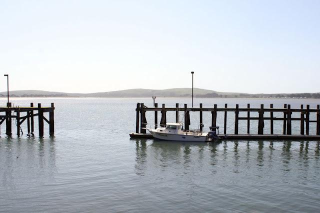 boat bodega bay california