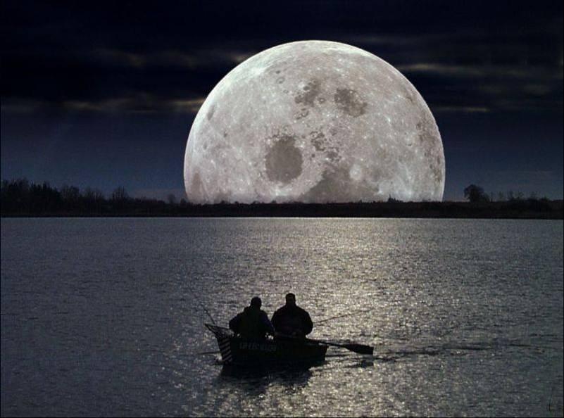 Huellas de la vida terrestre en la Luna