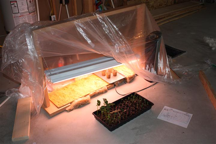 T-12 Grow Lights