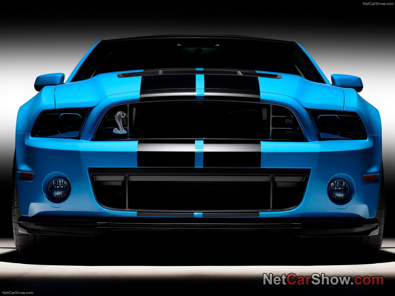shelby mustangs 20 pictures of new shelby mustang gt500 2013. Black Bedroom Furniture Sets. Home Design Ideas