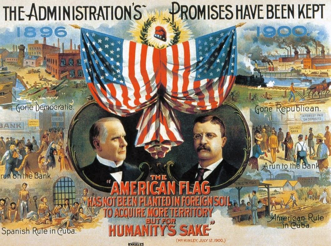 Teddy Roosevelt Vice President