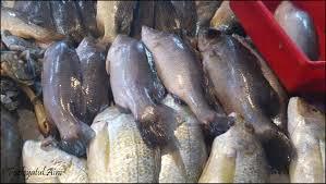 Pusat makanan laut kuala perlis KOMALAUT