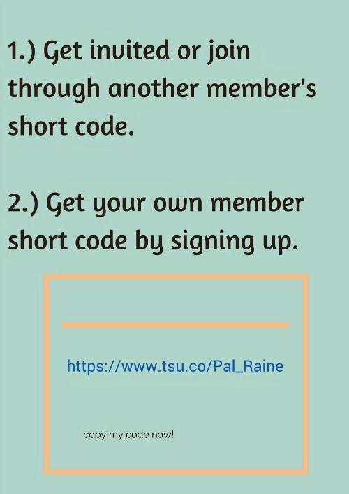 PalRaine-Tsu-Code
