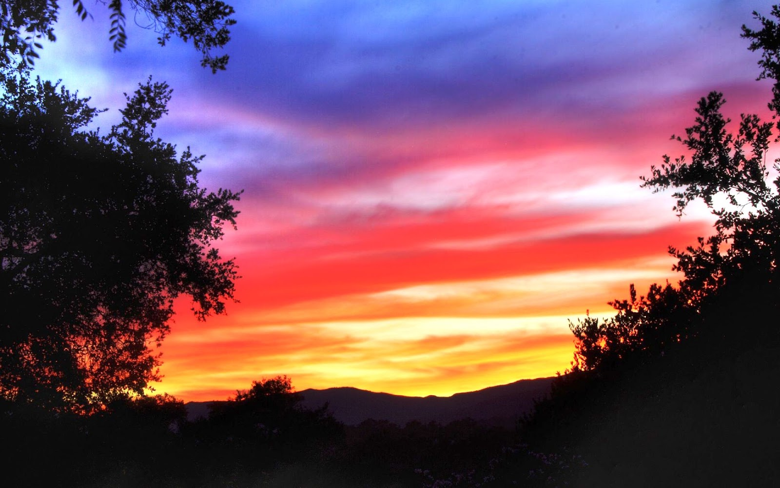Colorful sky beside forest silhouette on sunset 3d - Nature ke wallpaper ...