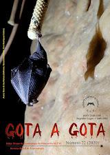 GOTA A GOTA nº 22 (2020). PINCHA EN LA PORTADA
