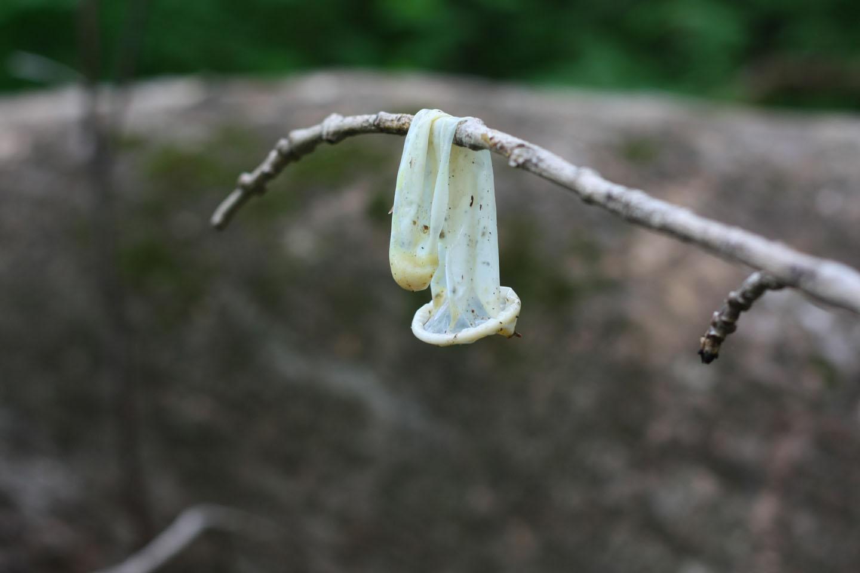 Презерватив на улице 7 фотография