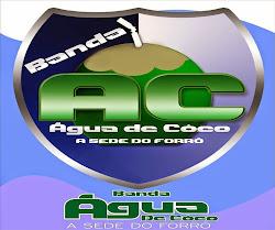 TOP  BANDA AGUA DE COCO