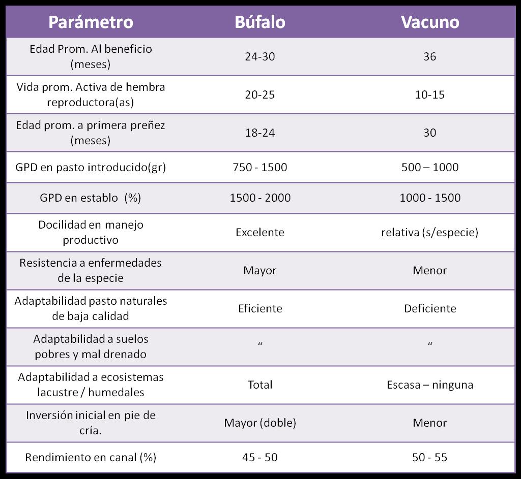 produccion vacunos: