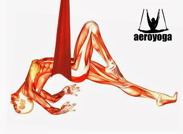 Yoga Aéreo México: Primer Taller de Biomecánica y Fisio Terapia ...