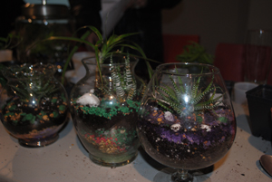 Xpace diy terrarium sand art xpace held a do it yourself terrarium and sand art workshop this past month check check check it out solutioingenieria Image collections