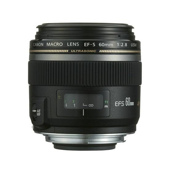 Canon Macro Lens Tips #photography