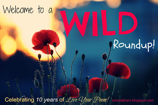 http://irenelatham.blogspot.com/2015/11/its-wild-10-year-blogiversary.html