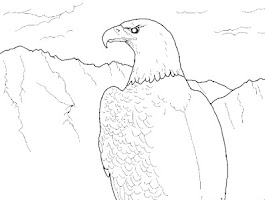 Kids Coloring Pages Eagles