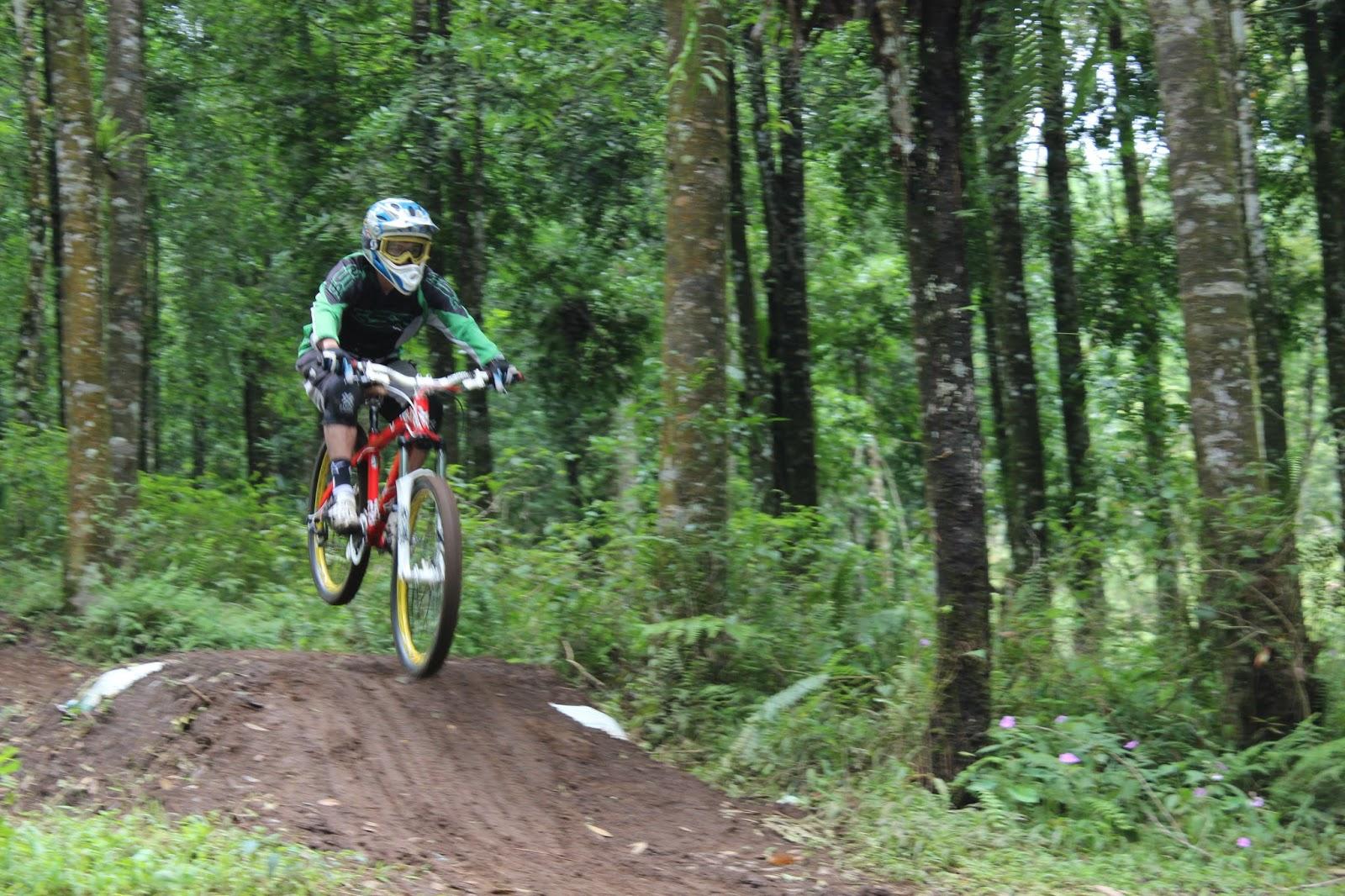 Sirkuit Downhill