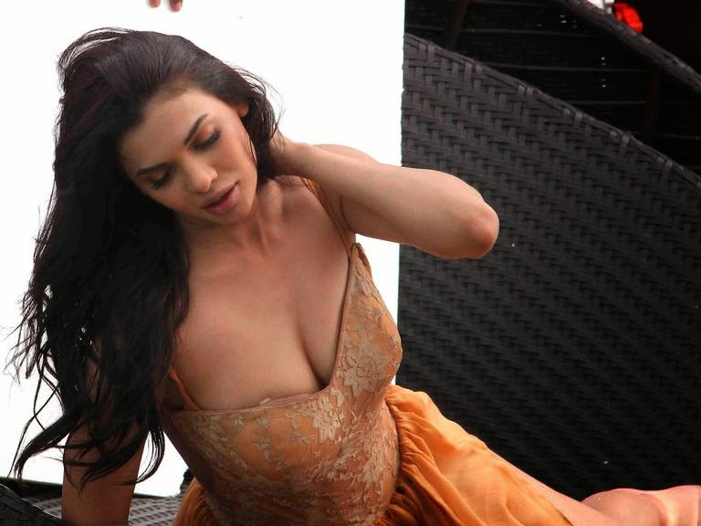 sara loren for ishq click Hot Sara Loren's photo-shoot with Adhyayan Suman photoshoot 2014