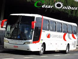 Busscar Vissta Buss-LO 2001