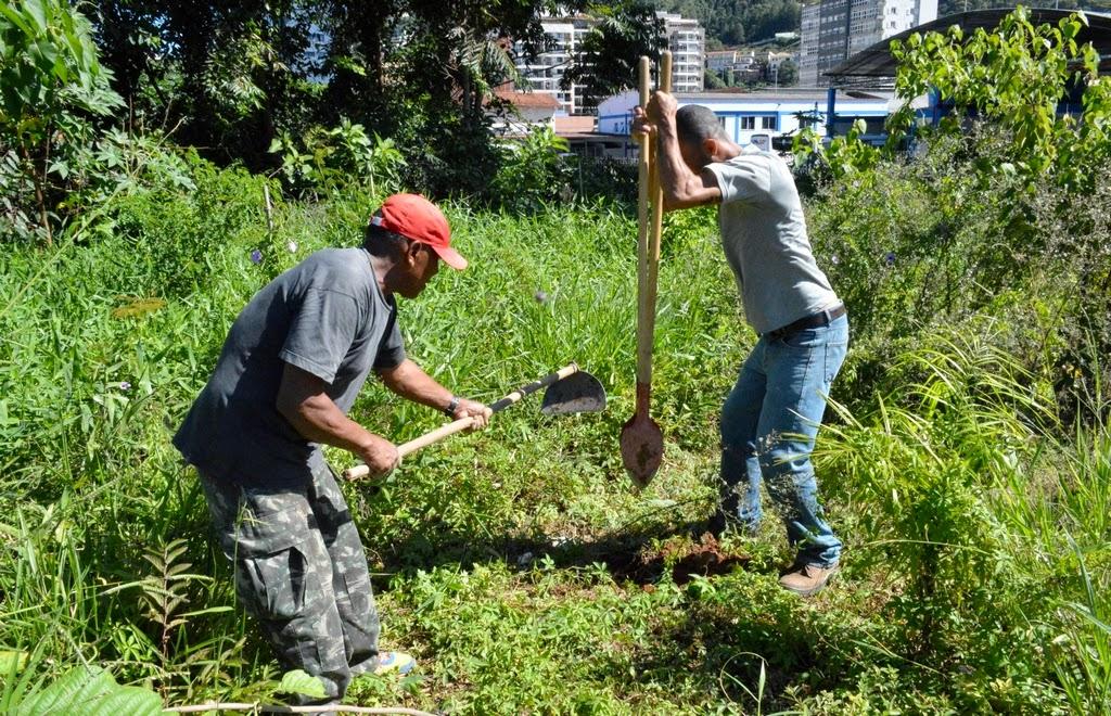 Manutenção em área de mata ciliar feita pela Secretaria de Meio Ambiente de Teresópolis