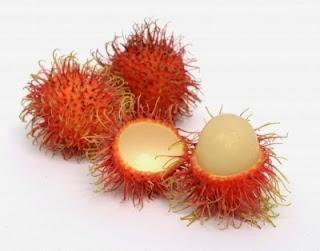 Kandungan Nutrisi dan Khasiat Buah Rambutan
