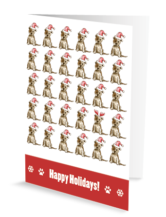 christmas greeting card cute chic sassy dog