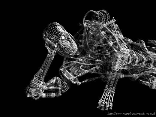 Terminator Wireframe por paterczm