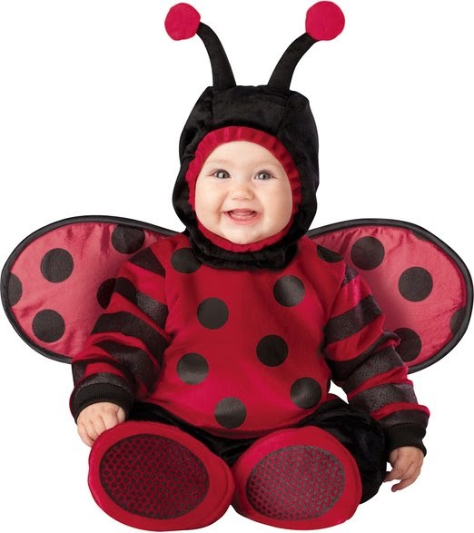 Infant Unisex Baby Lady Bug Costume