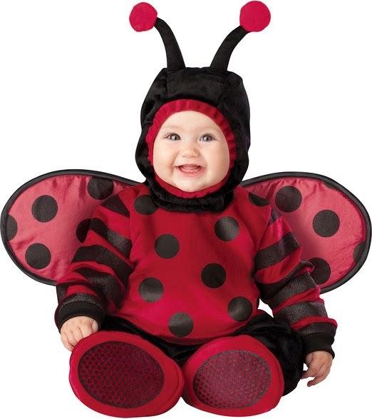 Infant Unisex Baby Lady Bug Costume
