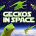 Trovati morti i cinque gechi inviati per riprodursi nello spazio