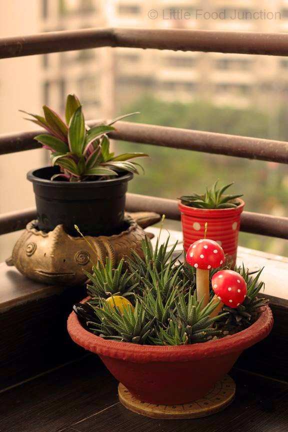 Indian Balcony Garden