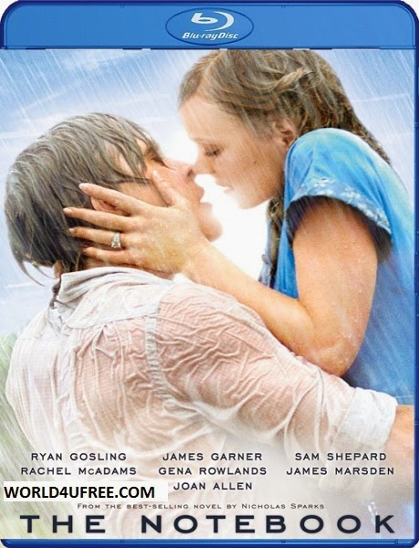The Notebook 2004 Dual Audio BRRip 300mb