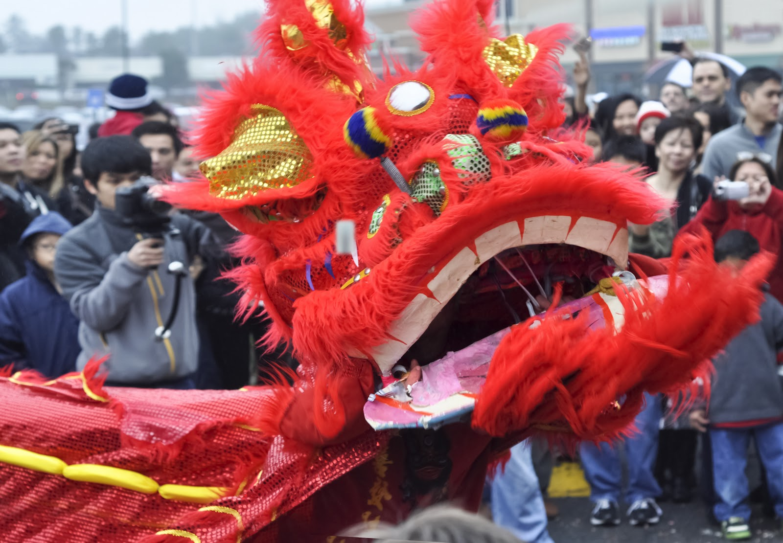 essay vietnamese new year The vietnamese new year is the tết nguyên đán which most times is the same day as the chinese new year due to the vietnamese using a lunar calendar similar to.