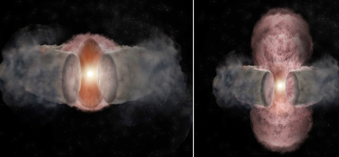 Artist's conception of the development of W75N(B)-VLA-2.. At left, a hot wind from the young star expands nearly spherically, as seen in 1996. At right, as seen in 2014, the hot wind has been shaped by encountering a dusty, donut-shaped torus around the star and appears elongated. Credit: Bill Saxton, NRAO/AUI/NSF