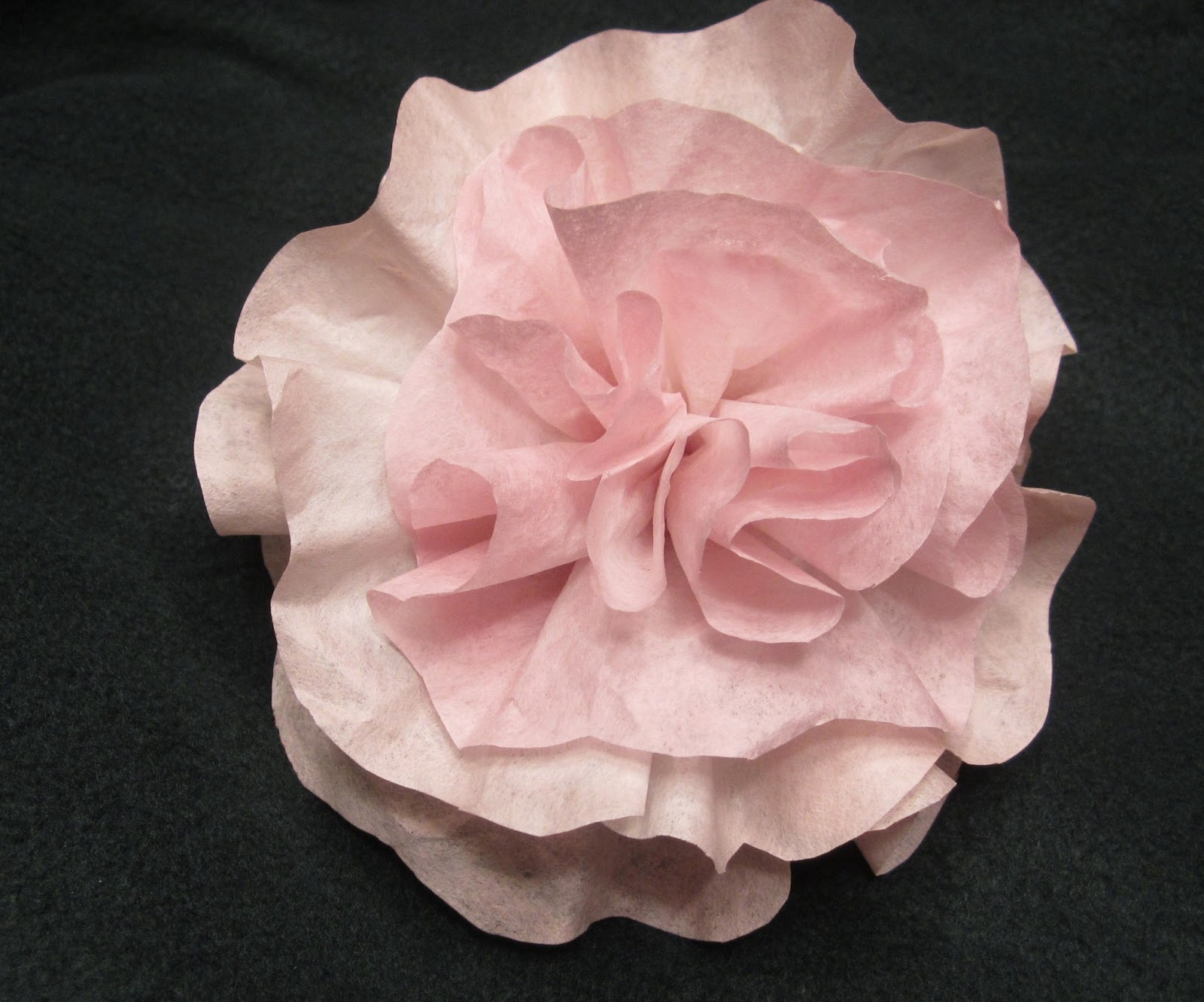 Coffee Filter Flower Process