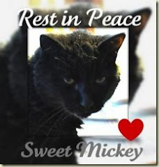 Farewell Dear Mickey
