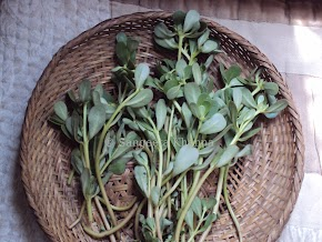 unusual greens .... purslane greens, made into a pizza sauce...