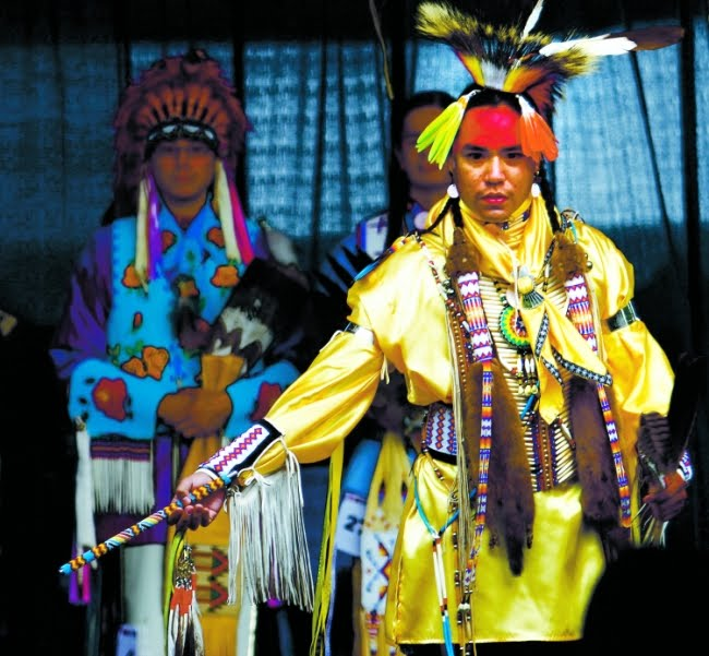 stock image navajo elder bright traditional clothing image11817796