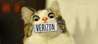 VerizonCat.jpg