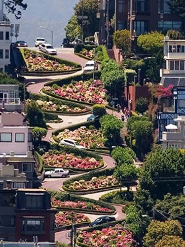 Lombard Street,San Francisco,California,USA