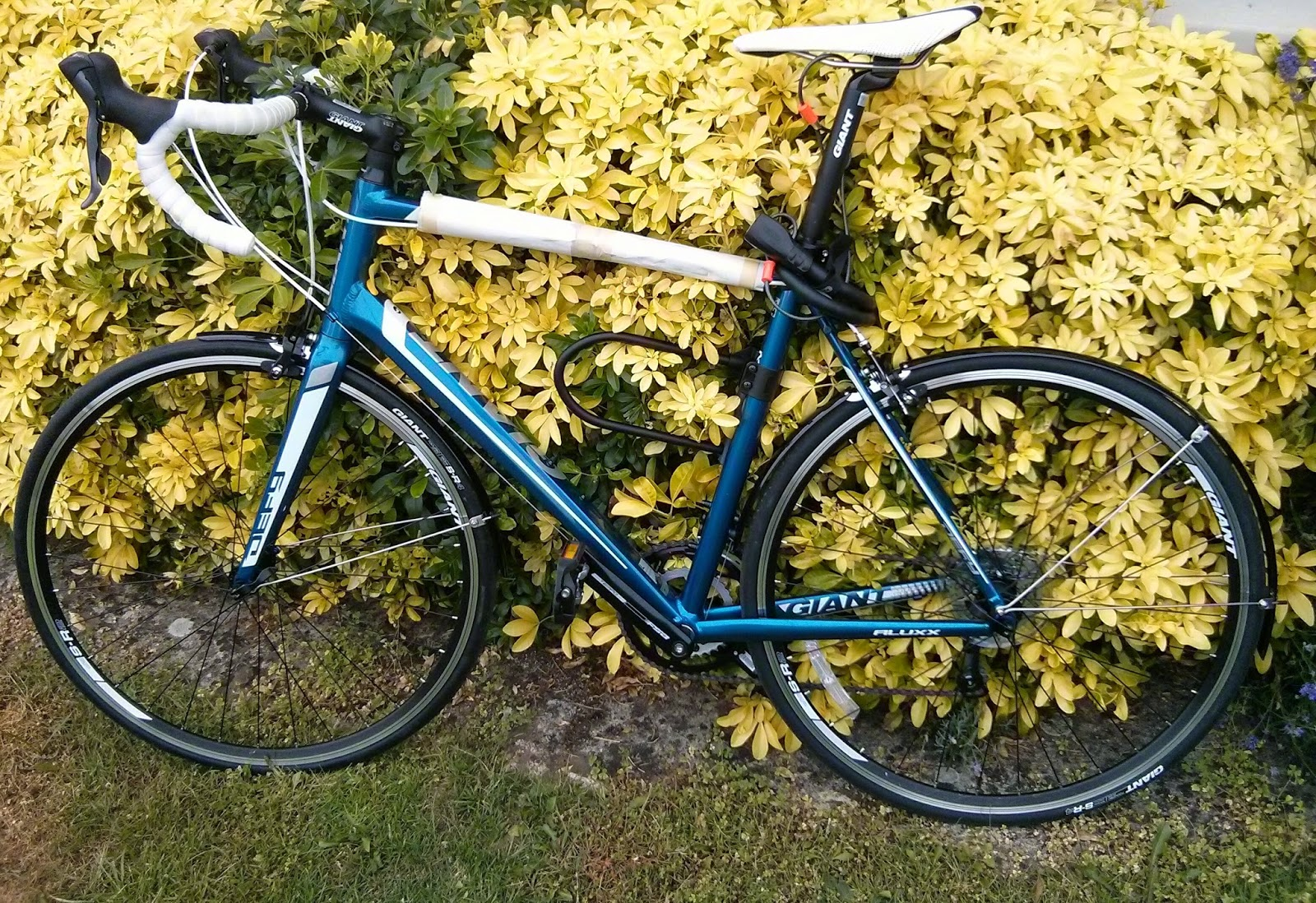 Chuck Glider S Bicycle Workshop Giant Defy Mudguards Or Fenders
